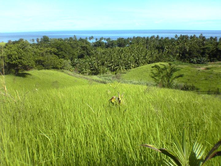 Pantai Timur Minahasa by ...... (lupa catat)