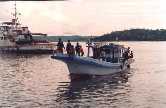 Fish trading