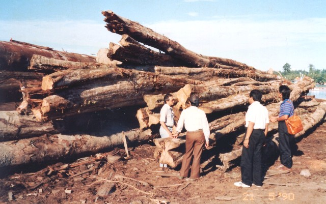 Logs unsuitable for export